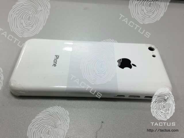 Angebliche Aufnahme des neuen Billig-iPhones. Quelle: Tactus