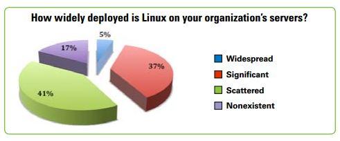 Nur 17 Prozent der Unternehmen setzen überhaupt kein Linux ein. Quelle: SUSE