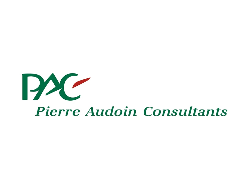 Logo Pierre Audoin Consultants