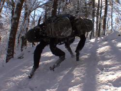 Roboter Big Dog (Bild: Boston Dynamics).