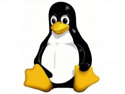 Linux-Maskottchen Tux (Grafik: Larry Ewing)