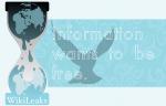 Wikileaks: TISA-Abkommen gefährdet europäischen Datenschutz