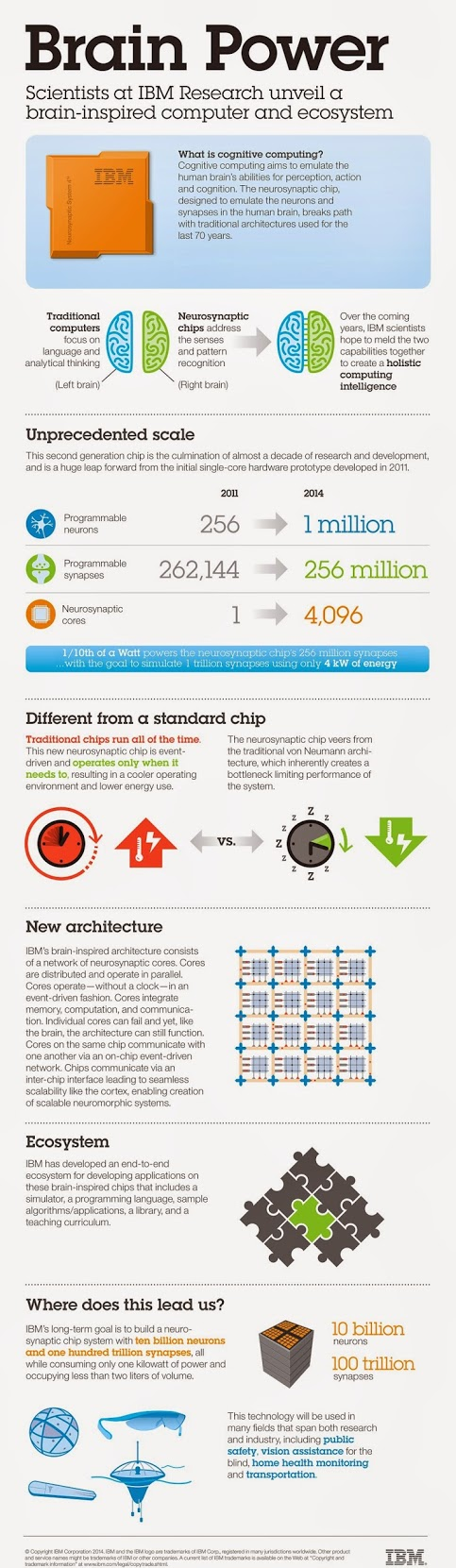 IBM SyNAPSE Infographic