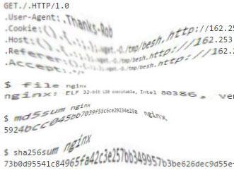 Sicherheitsexperten haben den ersten Beispiel-Code für Shellshock, dem Bash-Leck entdeckt.