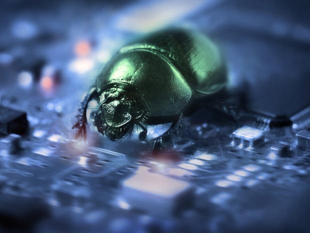 Computer Bug Poodle (Quelle: ZDNet.com)