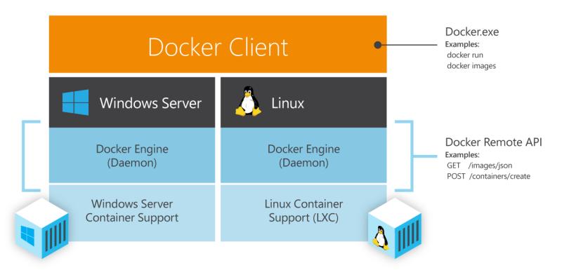 Die nächste Version von Windows Server liefert Unterstützung für Docker-Container (Bild: Microsoft).