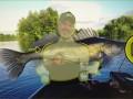 Fish Fact misst die Länge des Fisches. (Bild: bissclip.tv)