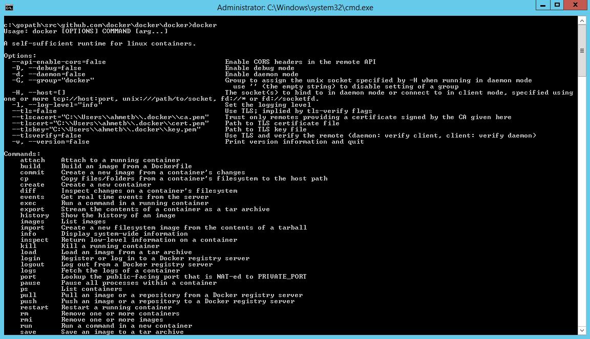 Docker auf Windows kompiliert. (Bild: Microsoft)