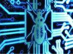 CryptoPHP - Webserver unter Beschuss