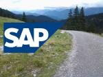 Ewige Gärtner in SAP-System-Landschaften