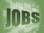 Die IT-Branche schafft 20.000 neue Jobs