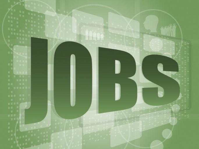 Jobs (Bild: Shutterstock)