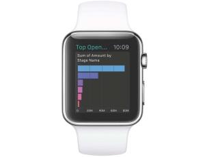Salesforce will im Laufe des April die Salesforce Analytic Cloud auch auf der Apple Watch verfügbar machen. Anwender können dann Visualisierungen schnell am Handgelenk einsehen und aber auch auf die Quelldaten zugreifen. (Bild: Salesforce.com)