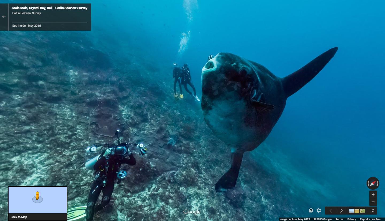 Google StreetView jetzt auch Unterwasser. (Bild: Google)