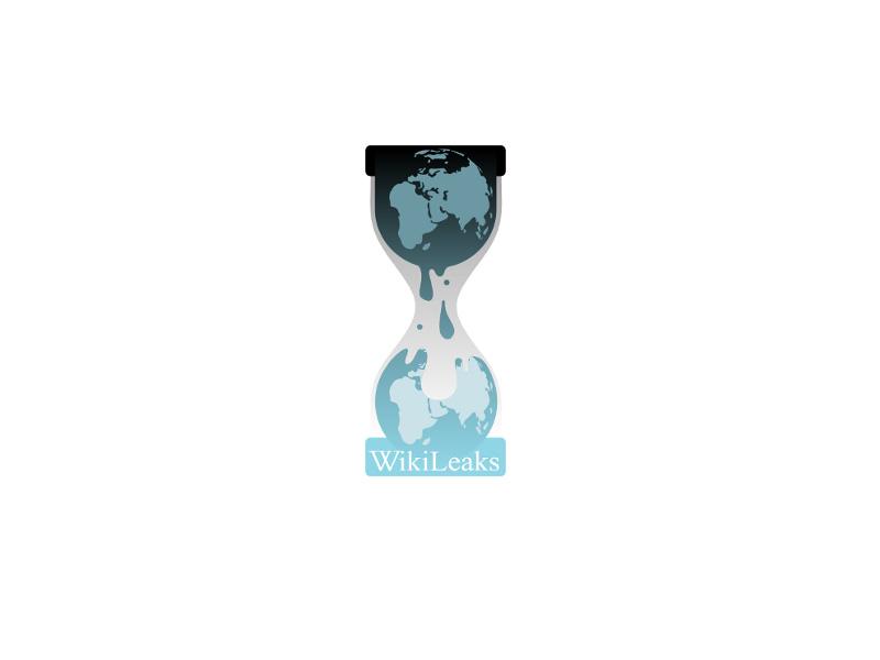 logo_wikileaks_800x600