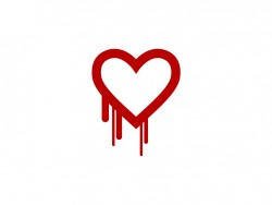 Heartbleed (Bild: Codenomicon)