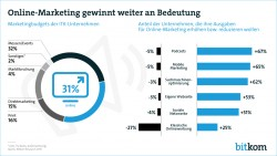 bitkom_marketingbudgets (Grafik: Bitkom)