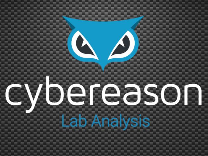logo_cybereason