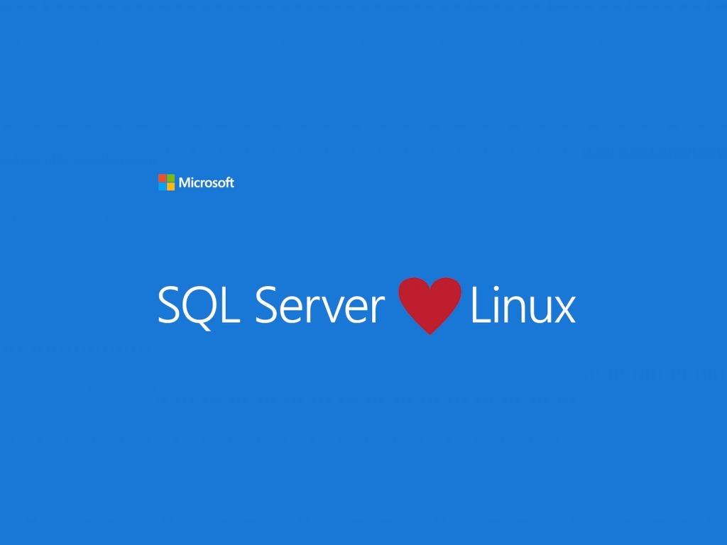 SQL Server liebt Linux. Microsoft will eine Version der Datenbank-Lösung auf Linux lauffähig machen. (Bild: Microsoft)