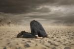Hat Sandboxing als Hacker-Abwehr ausgedient?