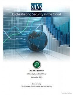 "Umfrage ""Orchestrating Security in the Cloud"" von SANS (Screenshot: Silicon.de)"