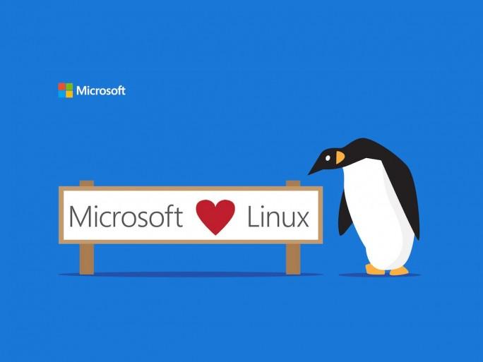 Microsoft und Linux (Grafik: Microsoft)