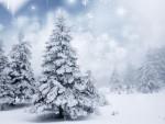 Weihnachten (Bild: Shutterstock/Melis)