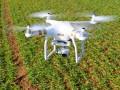 Drohne (Bild: Kletr / Shutterstock.com)