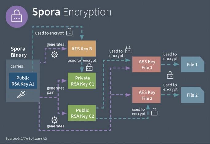 Spora arbeitet mit mehreren komplexen  Verschlüsselungsebenen und kann daher auch komplett offline einen Rechner kapern. (Bild: G-DATA)