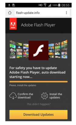 Eset warnt Android-Nutzer vor einem Fake-Flash-PLayer-Update (Screenshot: Eset)