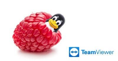 teamViewer_Raspberry_linux