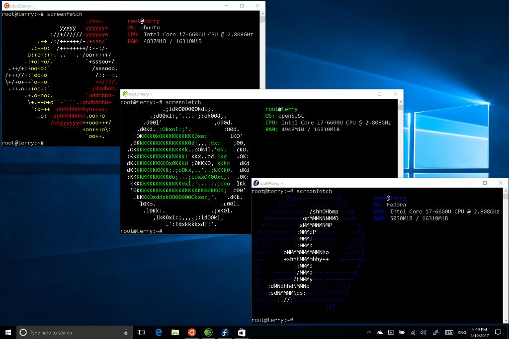 Das Linux Subsystem in Windows unterstützt künftig die Bash-Shells von Ubuntu, Suse und Fedora. (Screenshot: Microsoft)
