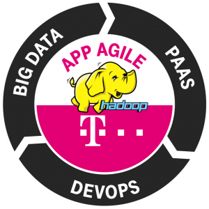 small_volume_hadoop_t-sys