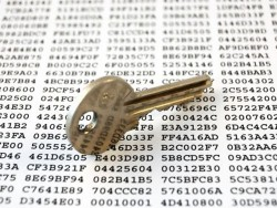 Verschlüsselung (Bild: Shutterstock/Cousin_Avi)