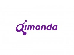 Qimonda (Grafik: Qimonda)