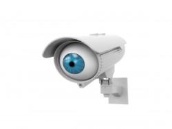 Überwachungskamera (Bild: Shutterstock)