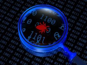 Bug entdeckt (Bild: Shuterstock)