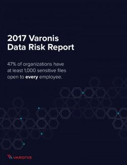 Varonis Datenrisiko-Report 2017 (Screenshot: silicon.de)