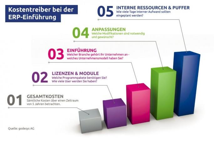 Kostentreiber bei ERP-Einführung (Grafik: Godesys)